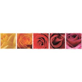 Кухонный фартук Розы