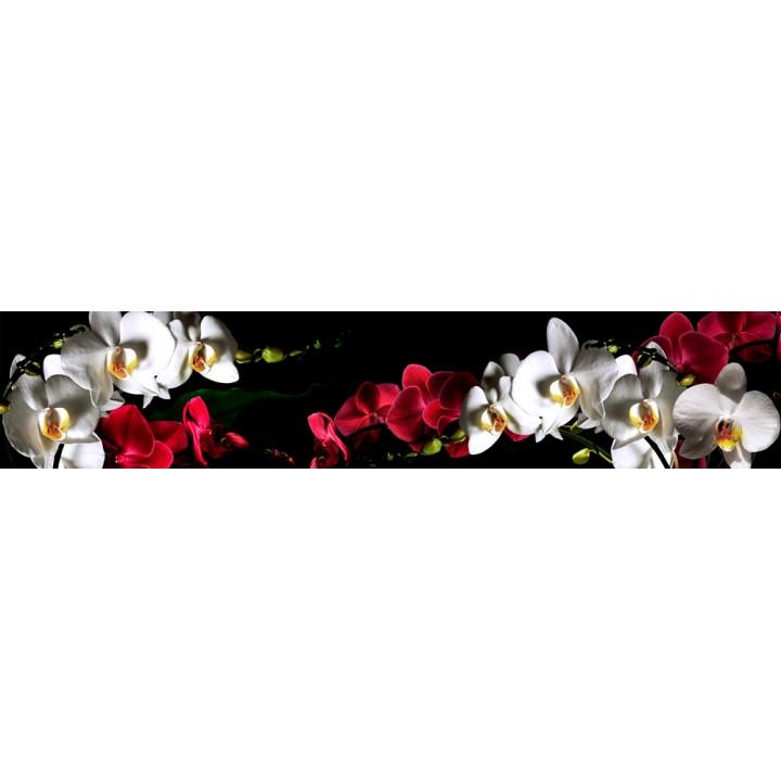 Кухонный фартук Орхидеи на черном