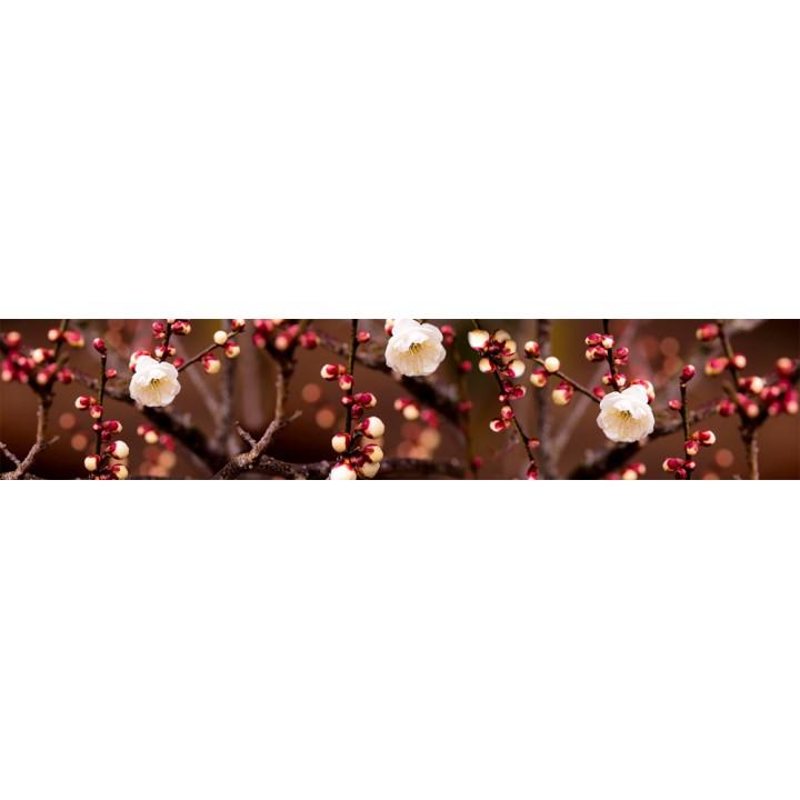 Кухонный фартук Вишня в цвету