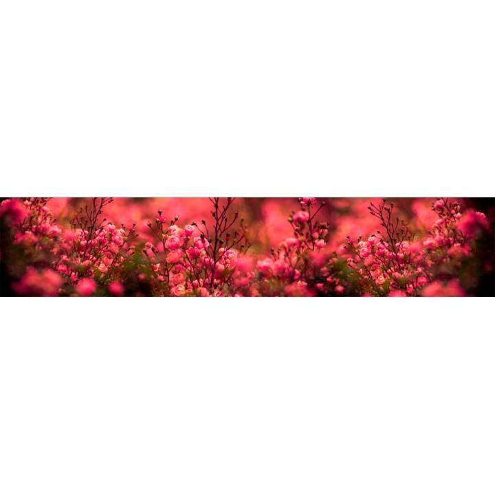 Кухонный фартук Кустовая роза