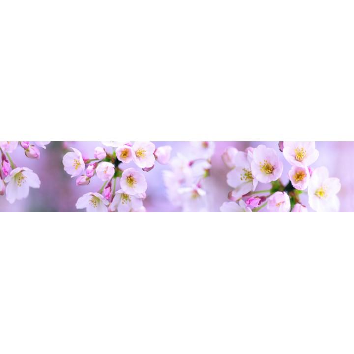 Кухонный фартук Розовые соцветия