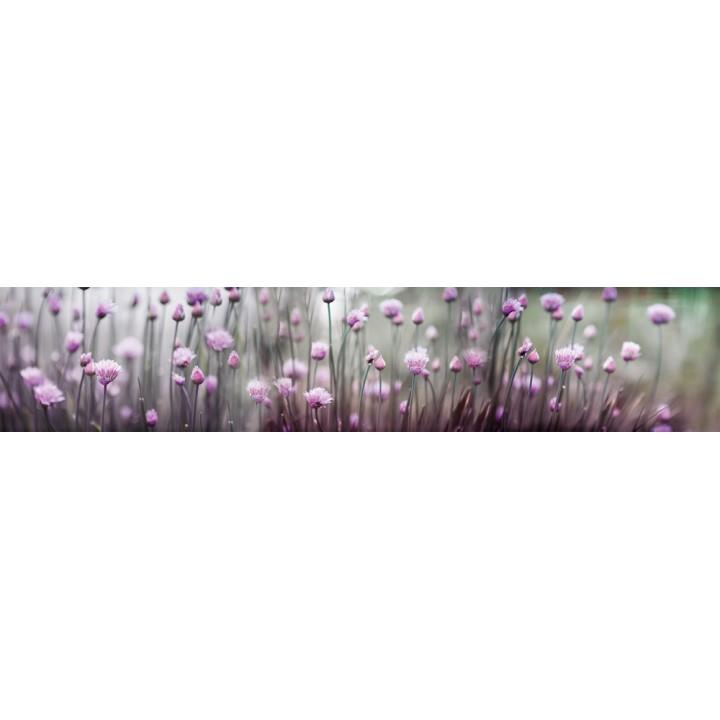 Кухонный фартук Луговые цветы