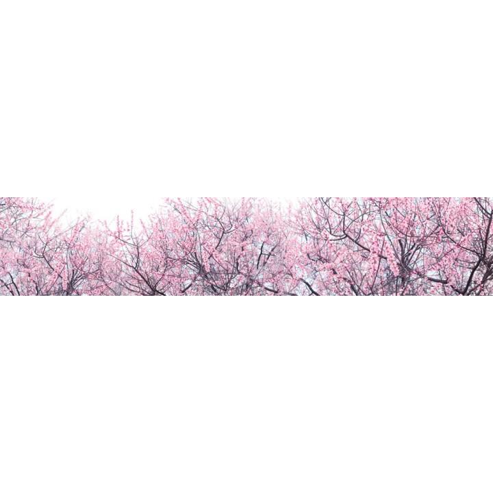 Кухонный фартук Цветение сакуры