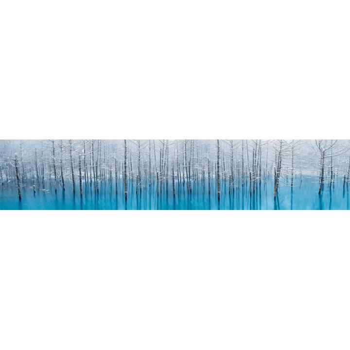 Кухонный фартук Морозный лес