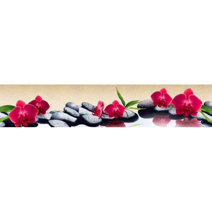 Кухонный фартук Красные орхидеи