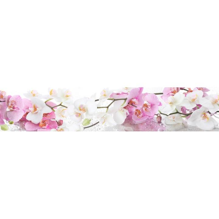 Кухонный фартук Ветка орхидеи