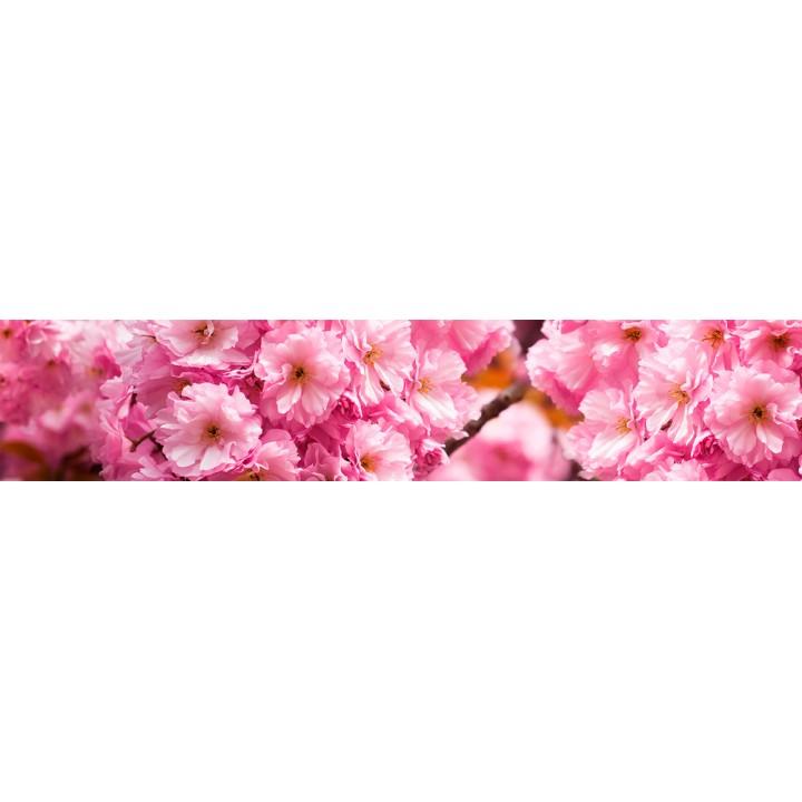 Кухонный фартук Цветущая вишня