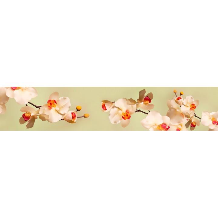 Кухонный фартук Нежные орхидеи