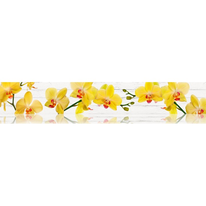 Кухонный фартук Желтая орхидея