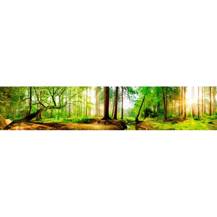 Кухонный фартук Зеленый лес 2